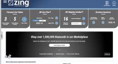 Zing dashboard